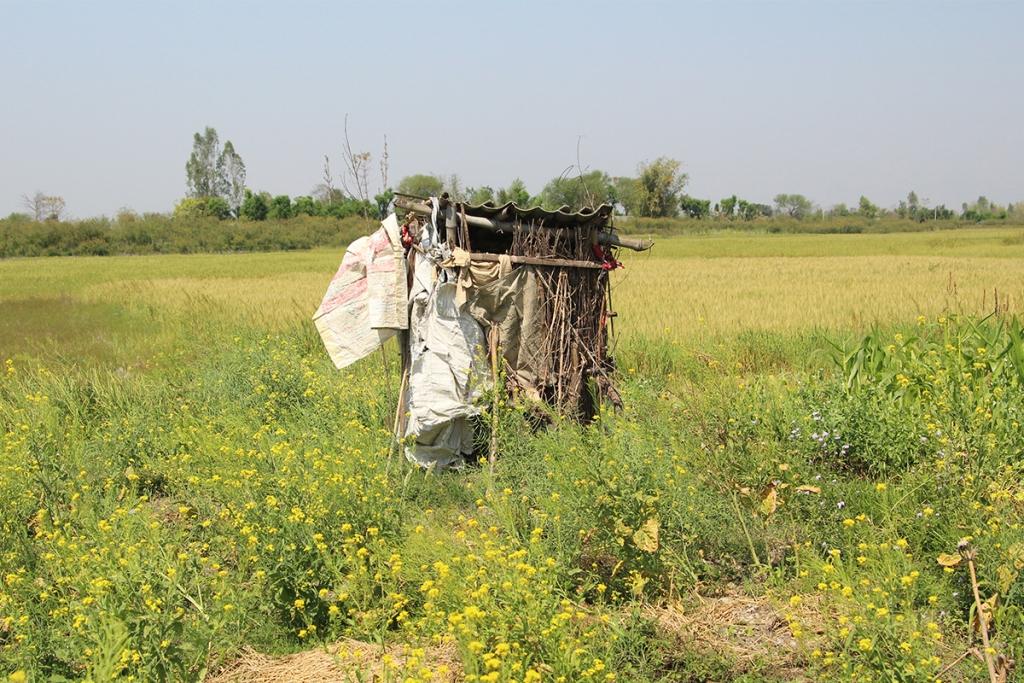 A toilet in Bardiya District (Image: Aawaaj News)